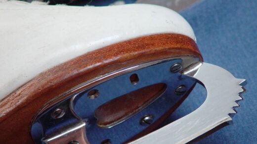 Ząbek łyżwy, autor en:User:Dr.frog, domena publiczna, źródło Wikimedia Commons