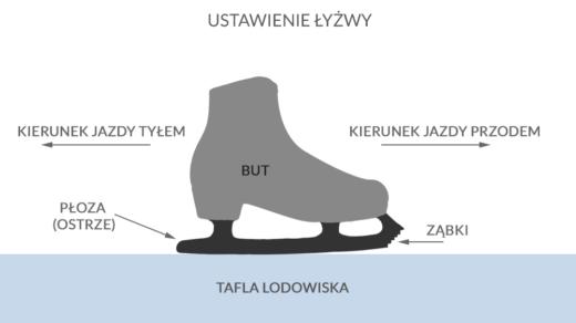 Łyżwa, autor: wintersports